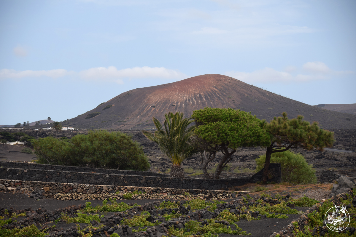 Lanzarote - volcan