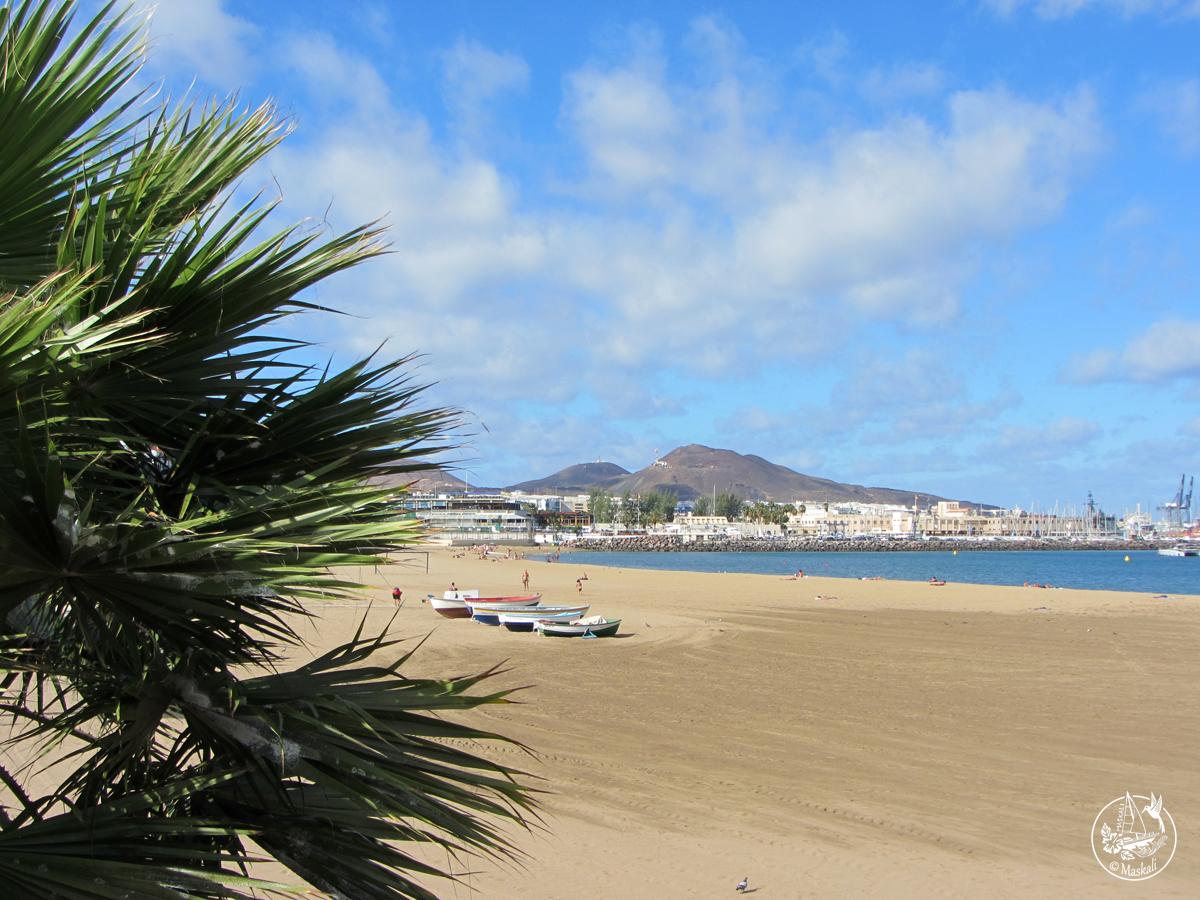 Gran Canaria express