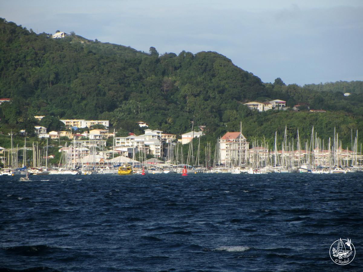 16 janvier : arrivée en Martinique !