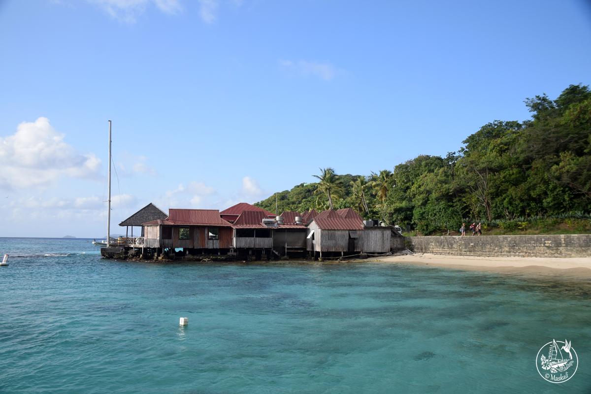 Du 5 au 8 janvier – Moustique, l'île des stars