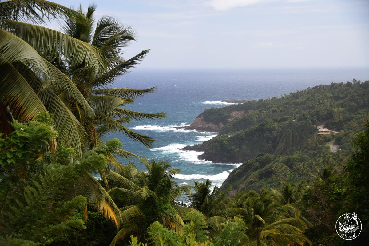 8 février : la côte est de l'île