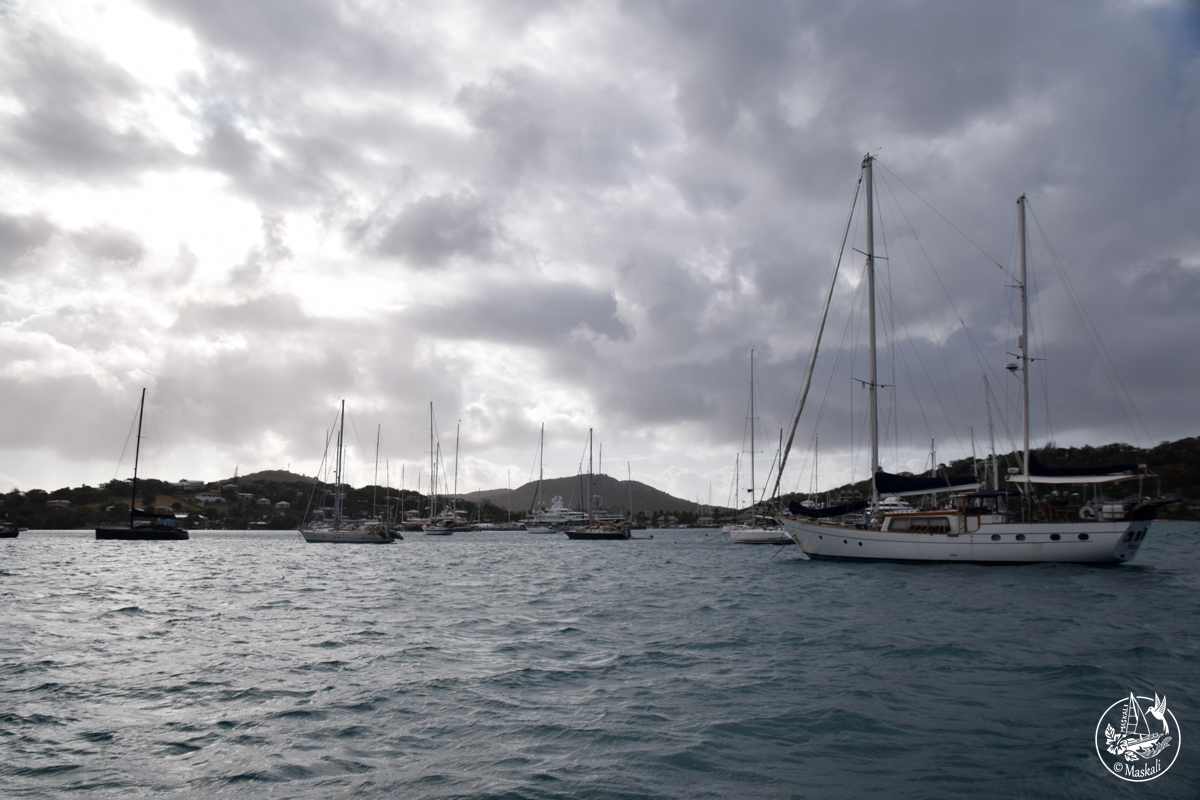 9 mars – encore à Antigua