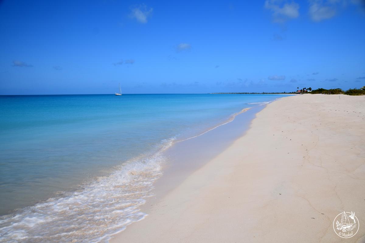 11 mars – Arrivée à Barbuda