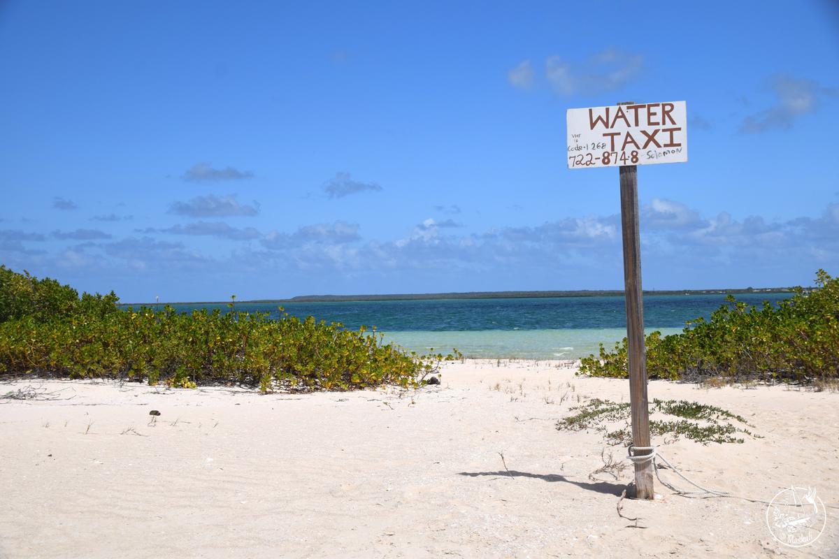 12 et 13 mars – Barbuda bellissima, sa capitale, ses frégates et son interminable plage