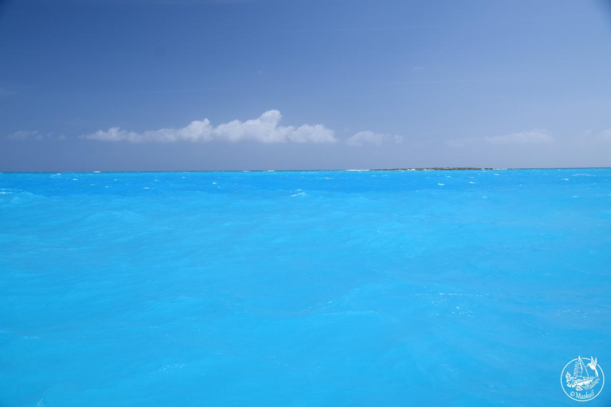 17 au 21 avril : Bleu comme Bahamas